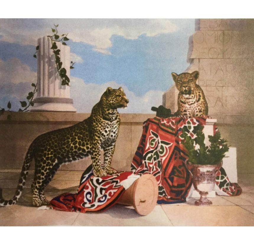 """Drougas. A -  """"Leopards"""""""